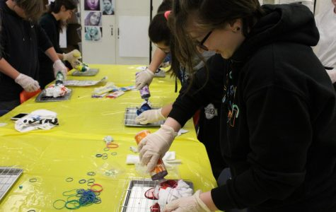 Art Club: Tie-Dyeing