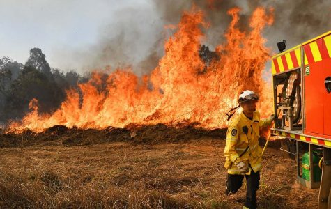 Fireman in action as he tries to help tame the fires.